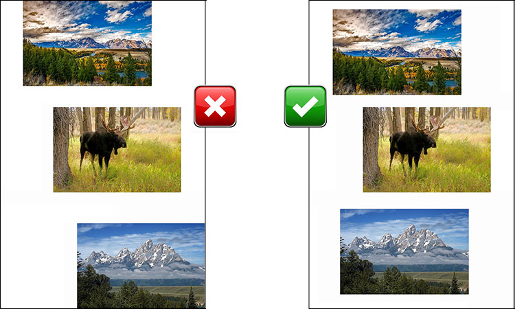 How to scan photos (All edges visible)